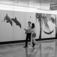 Гонконг  (диалог человека и плаката...) :: Sofia Rakitskaia