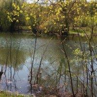 У реки , у речки :: Мила Бовкун