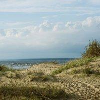 Залив :: Таня Летто