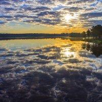 Новый день- новая жизнь :: Арина Зотова