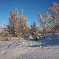 В памяти останутся снега белизна... :: Александр Попов
