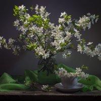 Когда цветут сады... :: Оксана Евкодимова