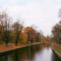 Осень 2 :: Алёна Корсакова
