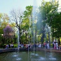 май в парке 1 :: Александр Прокудин