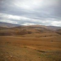 Пустыня :: Ирина