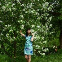 В роскоши майского цветения :: Albina