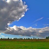 Облака :: Алексей Могилёв
