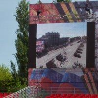 Экраны по всему периметру площади :: Albina