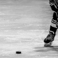 Трус не играет в хоккей :: Вадим Куликов