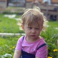 Одуванчики... :: Олеся