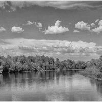 река Неман, чб :: Andrei Naronski
