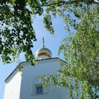 Звенит весна :: nika555nika Ирина