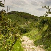Дорога к скальному монастырю Цыпово :: Юля Колосова