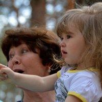 Испугали ребенка :: Валерий Лазарев