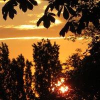 """Раннее утро, солнышко встало.  """"Доброе утро!""""- мне прошептало... :: Татьяна Смоляниченко"""