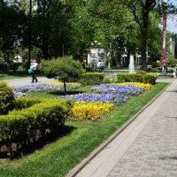 весна :: Вячеслав Ткаченко