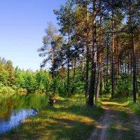 Когда дорога говорит с рекой... :: Лесо-Вед (Баранов)