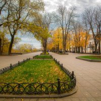 Осень на Приморском :: Андрей Харченко