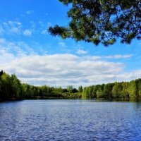 Озеро :: Евгения К