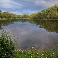 Старый пруд... :: Vadim77755 Коркин