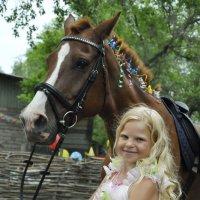 День рождения! Лошадь в подарок. :: Ольга Слободянюк