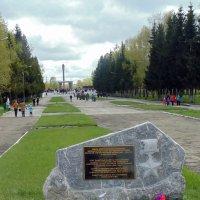 Парк Славы. :: Мила Бовкун