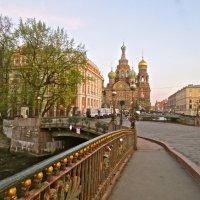 с Мало-Конюшенного моста :: Елена