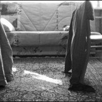Мужчины дома :: galina bronnikova