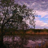 Наклонилось, вдруг, небо ниже ... :: Евгений Юрков