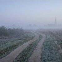 В туманно-инеевый рассвет недалеко от с.Давыдово :: Igor Andreev