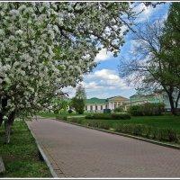 Весна в городе. Май :: muh5257