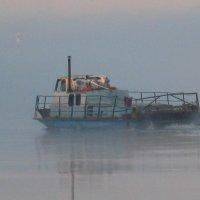 катер в тумане :: Наталья Зимирева