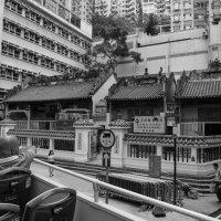 Hong Kong :: Sofia Rakitskaia