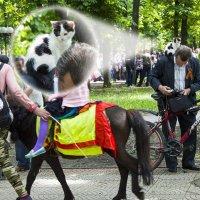 Фотографии с парада на 9 мая в Луганске :: Наталья (ShadeNataly) Мельник