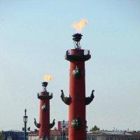 Ростральные колонны :: Вера Щукина