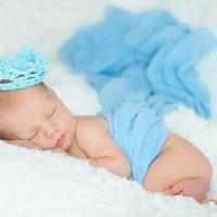 Сны маленького принца :: Юлия Куракина