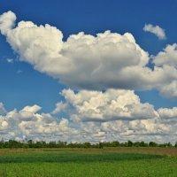 облака :: юрий иванов