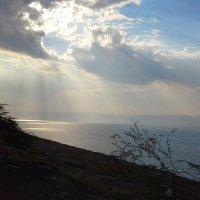Декабрьская  Иордания. Вид на Мёртвое море. :: юрий