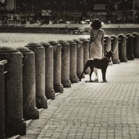 Дама с собачкой :: Анна Кокарева