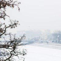 Зимняя сказка :: Тамара Пермякова