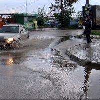 Рассекая воду... :: Нина Корешкова