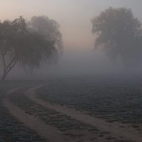 Туманная пелена :: Леся Вишня