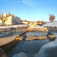 устье витьбы мост  утки :: Сергей Минкевич