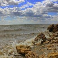 У моря :: оксана косатенко