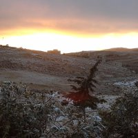 Иорданская горная зима. :: юрий