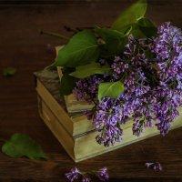 Весеннее чтиво. :: Альмира Юсупова