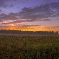 Встречая августа восход... :: Igor Andreev