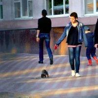 Пешеходы. Из наблюдений автомобилиста :: Елена - фотостилист, фотограф Ильина