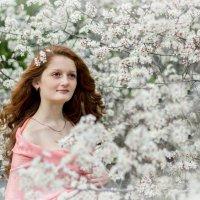 цветущие мечты :: Tatyana Belova