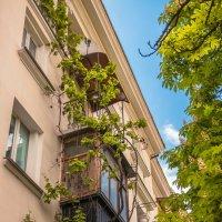 Балкончик :: Nyusha